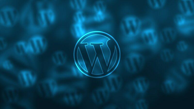 Характеристика движка WordPress при разработке сайта.
